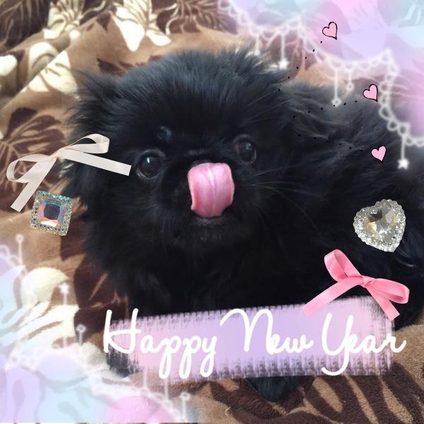 新年のご挨拶サムネイル